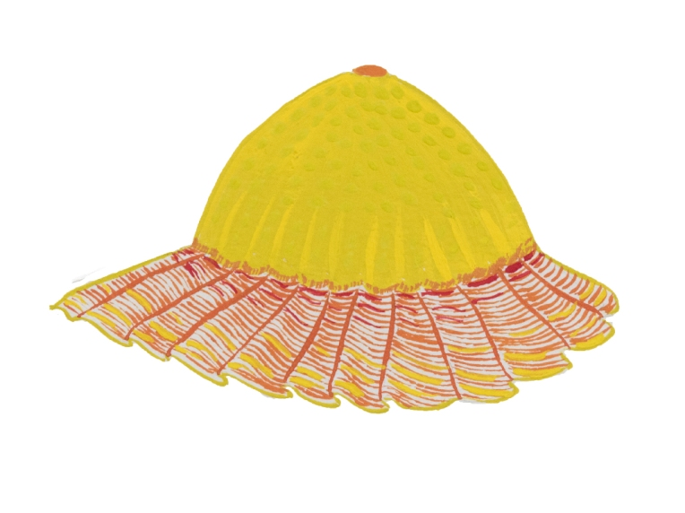 dessin chapeau enfant jaune détail illustration collection de bobs