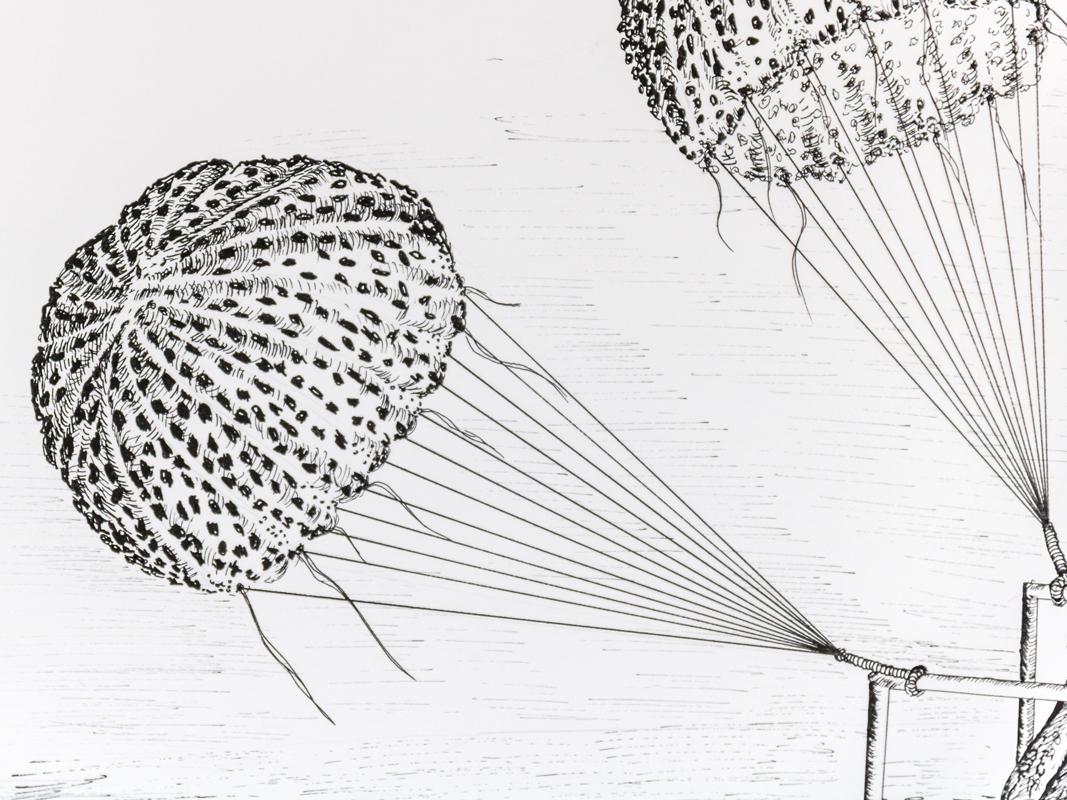 les méduses parachutes dans les airs ou dans les mers ? détail illustration voyage méduse encre noire
